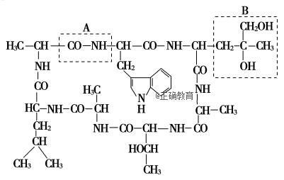 某外毒素为环状肽,结构式如图所示,据图回答问题